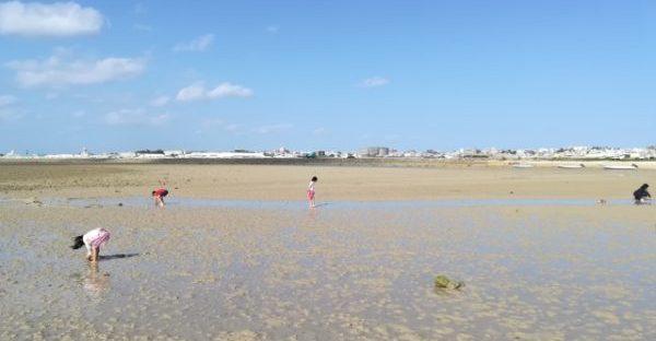 瀬長島 海岸