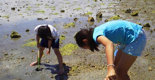 沖縄の浜下り(はまうい)☆おすすめ3つの潮干狩り海岸